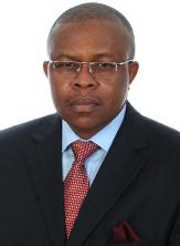 Ambassador Dozie Nwanna OON